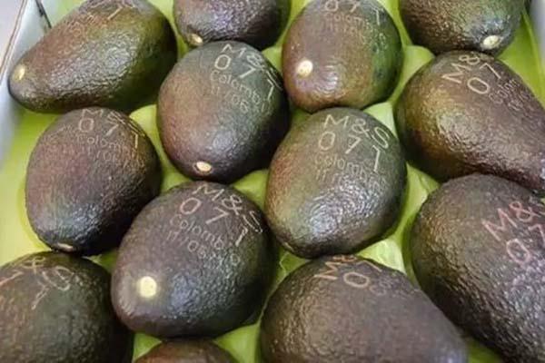 laser marking fruit